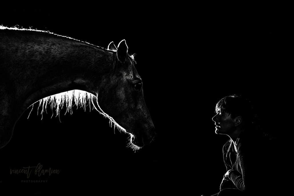 portrait equestre luxembourg