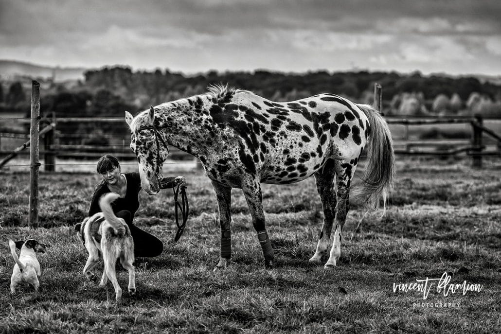 photographe cheval centre equestre