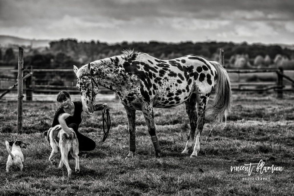 photographe cheval centre equestre